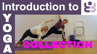Introductory Iyengar Course Collection