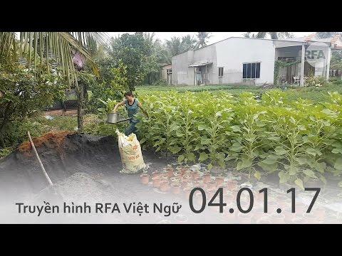 Truyền hình RFA 10h tối 04.01.17 Tin tức thời sự Việt Nam