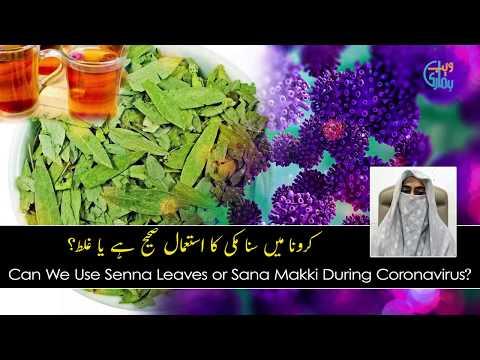Can We Use Senna Leaves Or Senna Makki During Coronavirus?