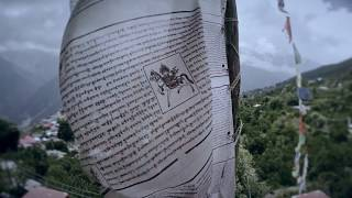 Bugs - artofawar , World
