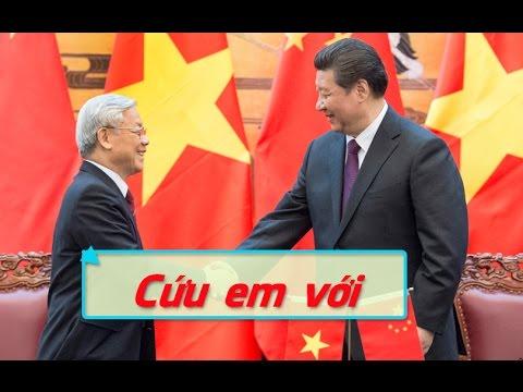 Nguyễn Phú Trọng đi Bắc Kinh xin chỉ thị tiêu diệt Trần Đại Quang để Đinh Thế Huynh làm bí thư