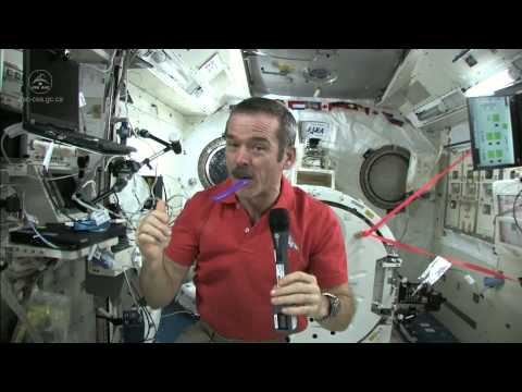 How To Brush Your Teeth In Space   Video - UCVTomc35agH1SM6kCKzwW_g