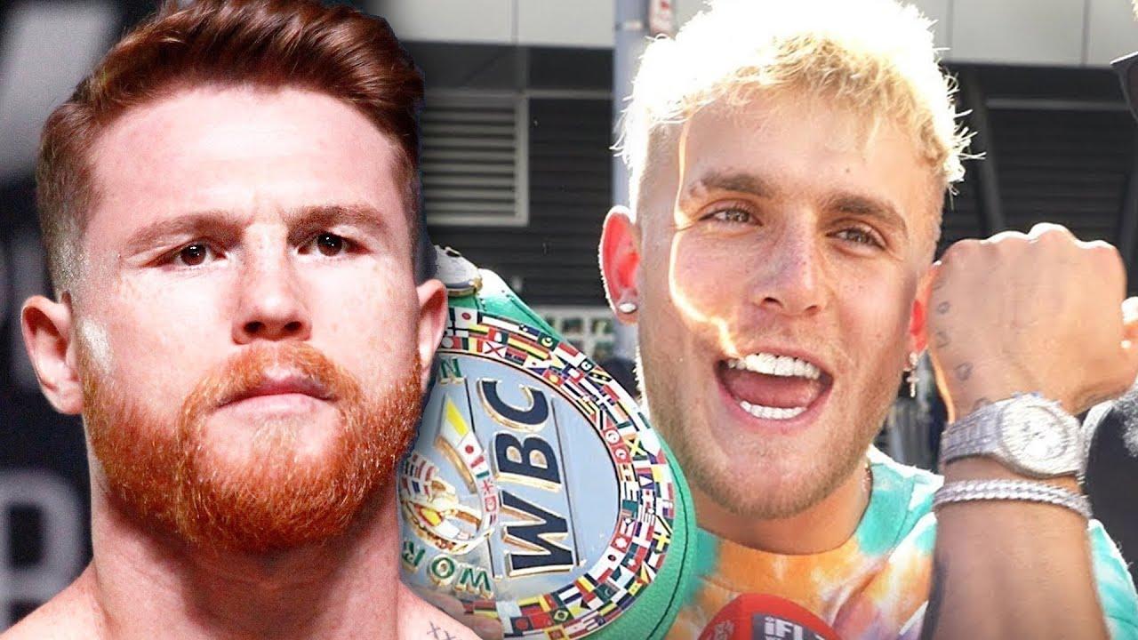 Jake Paul Praised By Canelo Alvarez & Logan Paul Calls Out Conor McGregor