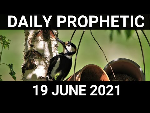 Daily Prophetic 19 June 2021 2 of 7