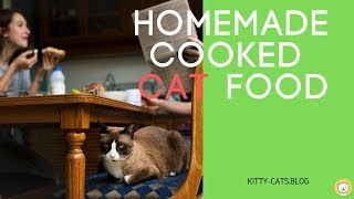 Homemade Cooked cat Food 2019 - for you and your cat