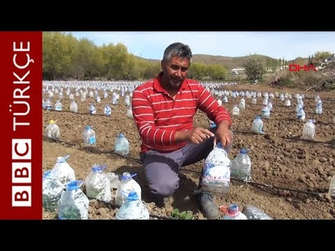 3 Bin Pet Şişe İle Sera Yapan Yozgatlı Çiftçi
