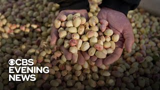 Farmers fear impact of escalating trade war with China