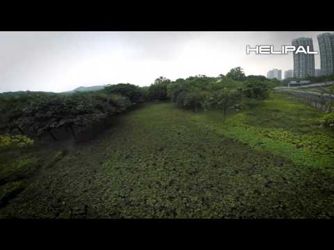Storm Racing Drone - HeliPal.com - UCGrIvupoLcFCW3CIKvfNfow