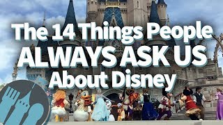 The 14 Things People ALWAYS Ask Us About Disney World