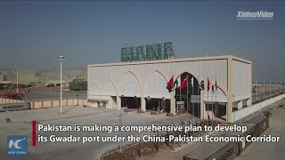 Gwadar to be leading trading port in the region: Pakistani minister