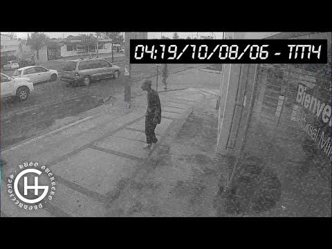 videos de la santa grifa