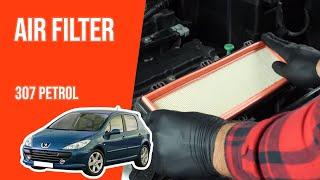 Smontare filtro aria Peugeot 307 1.4 16V