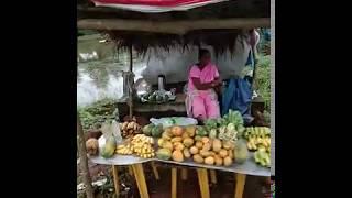 Goa fruit, vegetable vendor sells in make shift roadside shelter on NH 17 in Verna