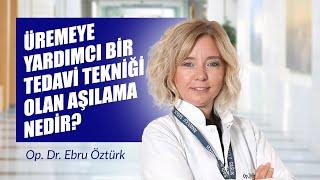 Üremeye Yardımcı Bir Tedavi Tekniği olan Aşılama Nedir? - Op. Dr. Ebru Öztürk Öksüz