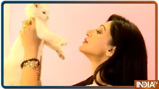TV celebs showcase their love for pets