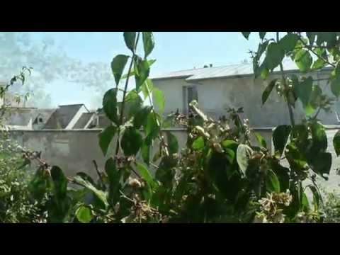 Carnet de chantier N°6: maison organique & bioclimatique à Brec'h - a.typique Patrice BIDEAU