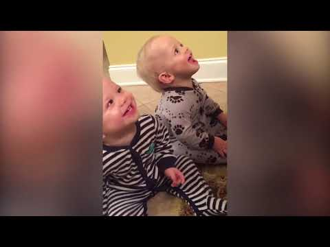 Funny Twins and Triplets Baby Playing Together   Funniest Baby Video
