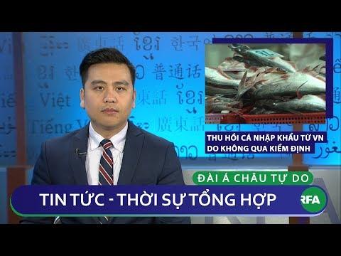 Tin nóng 24h 08/02/2019   Mỹ thu hồi cá nhập khẩu từ Việt Nam do không qua kiểm định