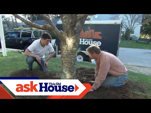 How to Mulch a Garden Bed | Ask This Old House - UCUtWNBWbFL9We-cdXkiAuJA