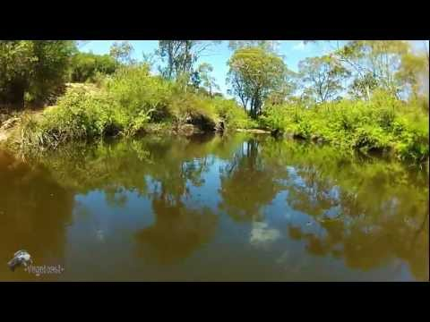 Wet in the wild Quadcopter FPV Gopro - UCtFCt6a73h6hzXiSGqTDTrg