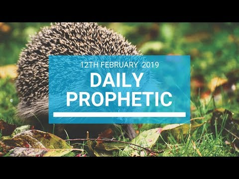 Daily Prophetic 12  February 2019