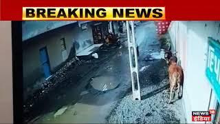 OMG! खूंखार सांड का आतंक, दो लोगों पर ऐसे किया जानलेवा हमला, देखें CCTV   News18 Hindi