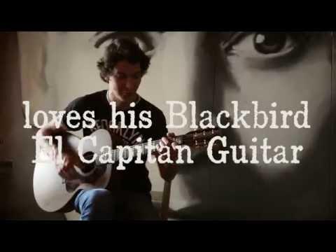 Paul Plexi Loves his Blackbird El Capitan