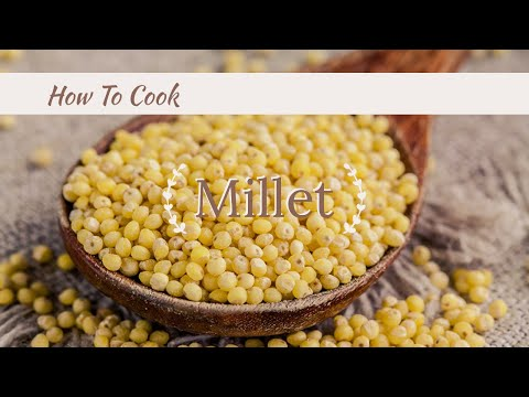 How to cook Millet - HealthCastle.com You Can Cook Series