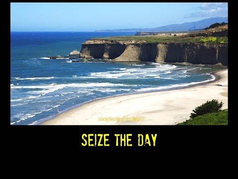 Seize the Day