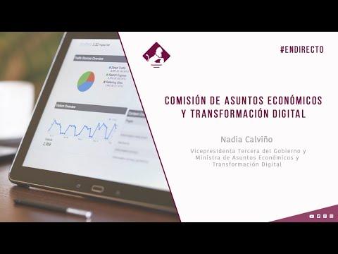 Comisión de Asuntos Económicos y Transformación Digital (29/01/2021)