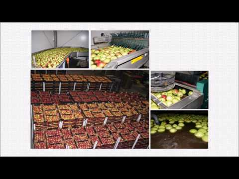 SCD Bio Ag in Fruit Cultivation