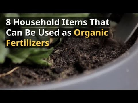 8 Household Items That Can Be Used as Organic Fertilizers