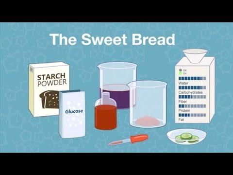 "Virtual Kids' Lab – ""The Sweet Bread"""