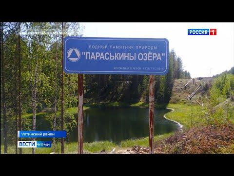 """Новый федеральный заказник """"Параськины озёра"""" будет создан в Ухтинском районе"""