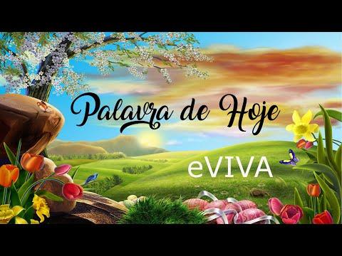 PALAVRA DE HOJE 19 DE JANEIRO eVIVA MENSAGEM MOTIVACIONAL PARA REFLEXÃO DE VIDA - BOM DIA!