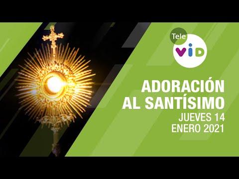 Adoración al Santísimo 🙏 Jueves 14 Enero de 2021, Padre Mariusz Maka – Tele VID