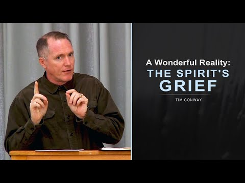 A Wonderful Reality: The Spirit's Grief - Tim Conway
