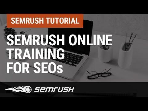 SEMrush online overview for SEOs