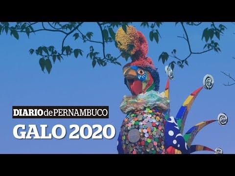O passo a passo do Galo da Madrugada 2020