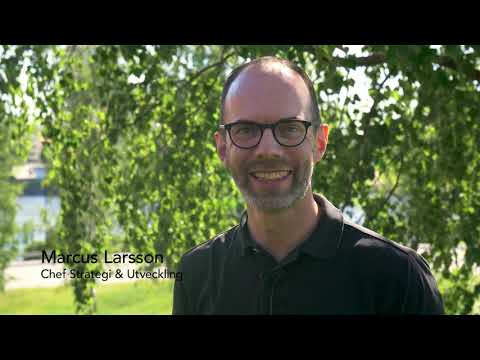 Hållbarhetsstrateg till Umeå Energi