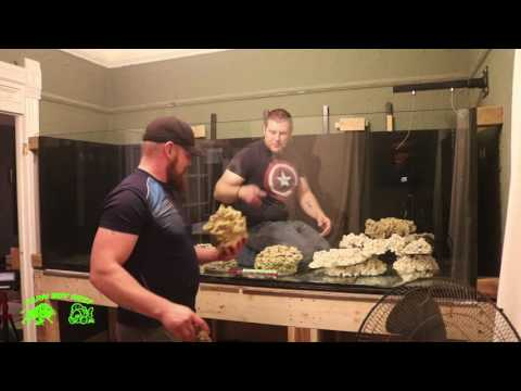 Aquascaping  the 700 Gallon Phoenix reef  tank no loud music