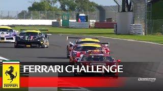 Ferrari Challenge Europe – Silverstone 2017, Coppa Shell Race 1