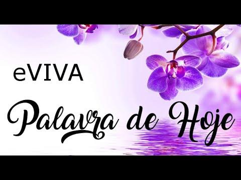 PALAVRA DE HOJE 04 DE MAIO eVIVA MENSAGEM MOTIVACIONAL PARA REFLEXÃO DE VIDA - BOM DIA!