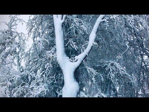 Sněžná romance – beze slov ❄️🌍❄️