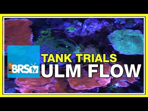 ULM Tank Trials Ep-13: Flow for Ultra Low Maintenance | BRStv