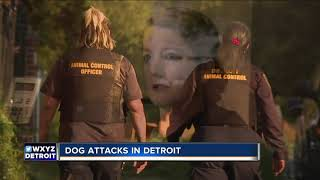 Dog attacks and bites in Detroit prompted more than 200 calls to 911 in the last year