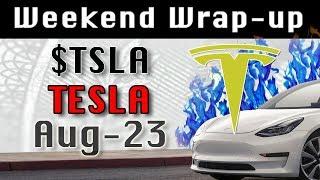 TESLA : TSLA Aug-23 Weekend Wrap-up StockMarket Technical Analysis Chart