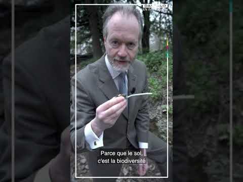 Vidéo de Mathieu Burniat