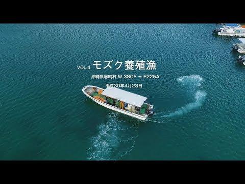 漁業とともに モズク養殖漁/ダイビング船