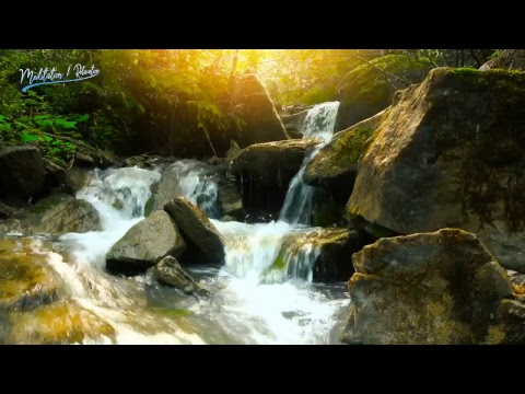 Meditation & Relaxation - Music channel - Channels Videos